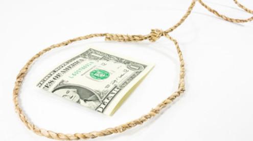 Финансовая пирамида «форекс тренд» прекратила делать выплаты