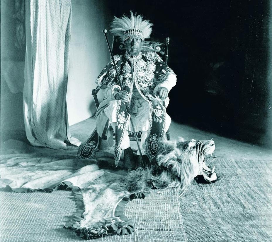 Фото дня: эфиопский лев