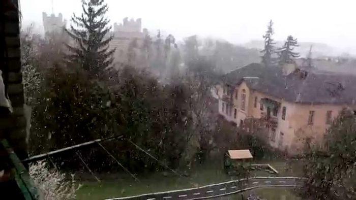 Год, когда в алабаме выпал снег