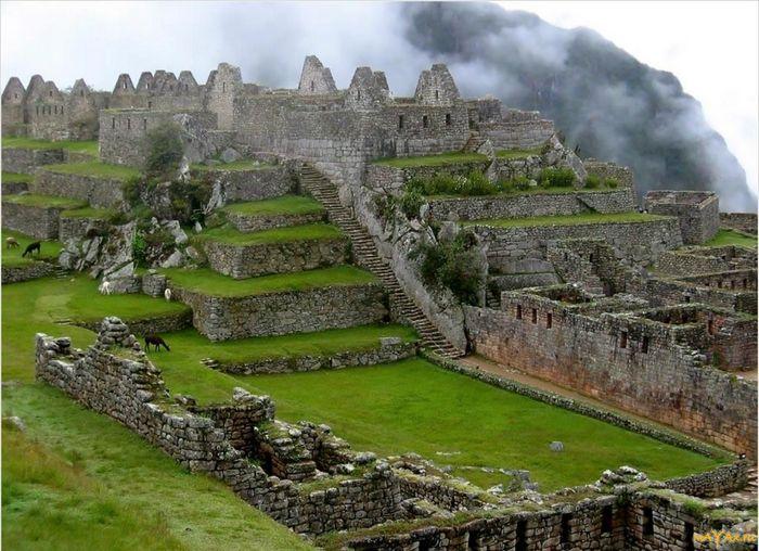 История кофе: майя, инки и наши дни