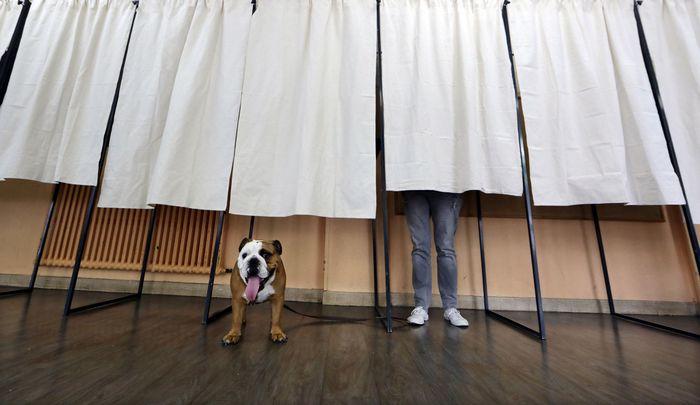 В египте со скандалом завершились кровавые парламентские выборы